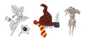 Harry potter au jardin Pelt
